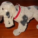 cane lunotto 1
